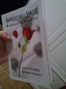 Maria Grujicic Unpredictable Spaces
